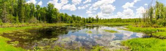 Outdoor Lifestyle in Michigan's Upper Peninsula!