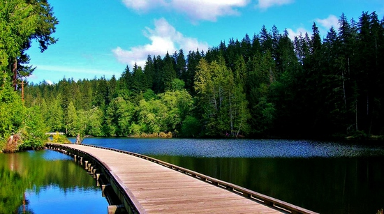 Settle Down by the River in Beautiful Grays Harbor, WA!