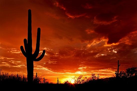 Beautiful Lot in Mohave County, Arizona!