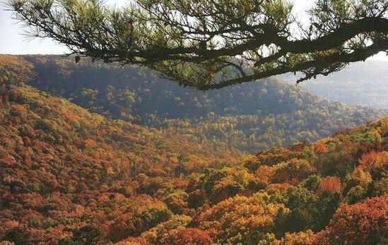 Fresh Country Air: Sharp County, Arkansas!