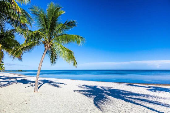 Live Near Amazing Beaches in the Sunshine State!