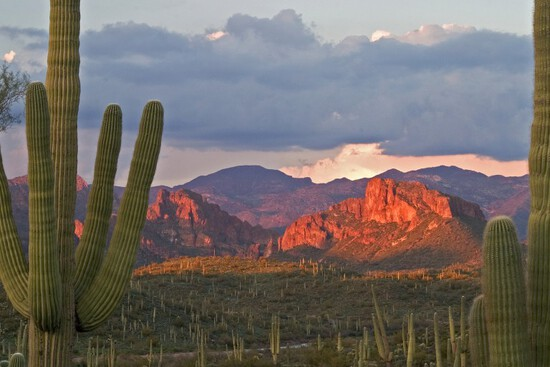*SPECIAL INCENTIVE* Beautiful Scenic Views in Cochise County, Arizona!