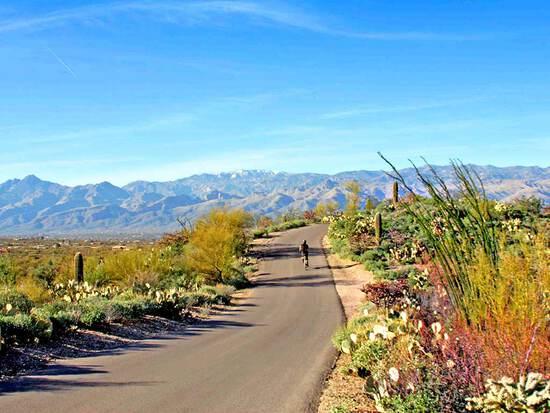 Over 2 Acres in Navajo County, Arizona!