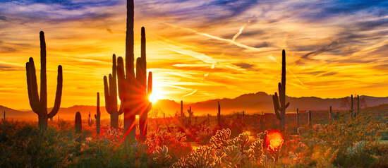 Over Two Acres in Arizona!