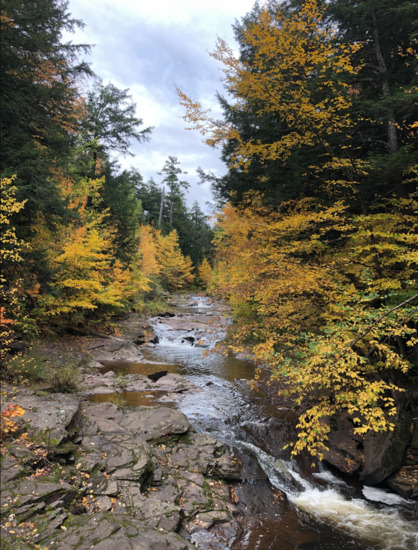 Incredible Outdoor Activities and Scenic Beauty in Antrim County, Michigan!