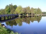 Beautiful Property in Benton Harbor, Michigan!