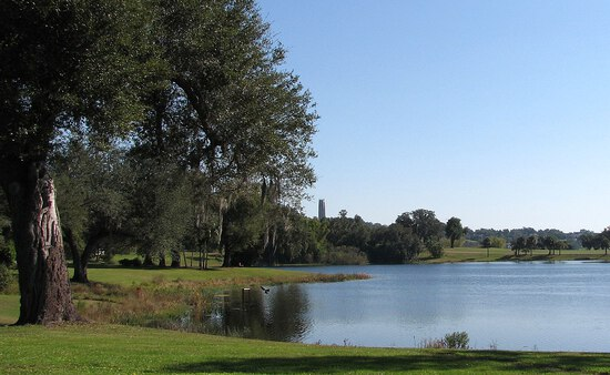 One Acre in Polk County, Florida!