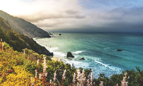 A Short Walk to the Beach on the California Coast!