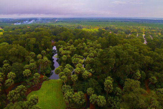 Peaceful Country Living At Its Finest in Polk County, Florida!