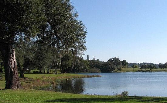 Over an Acre in Polk County, Florida!