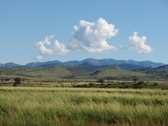 Beautiful Scenic Views on Your Very Own Land in Cochise County, Arizona!