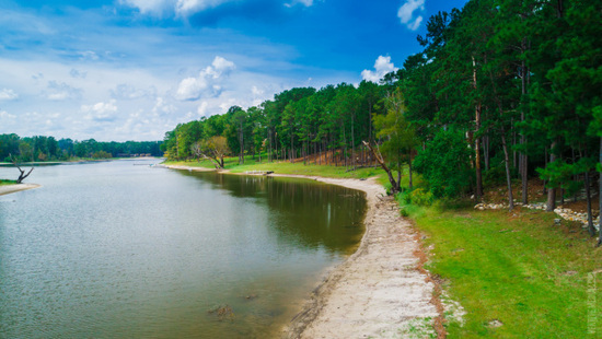 Perfect Retreat Near the Shores of Lake Sam Rayburn in East Texas!
