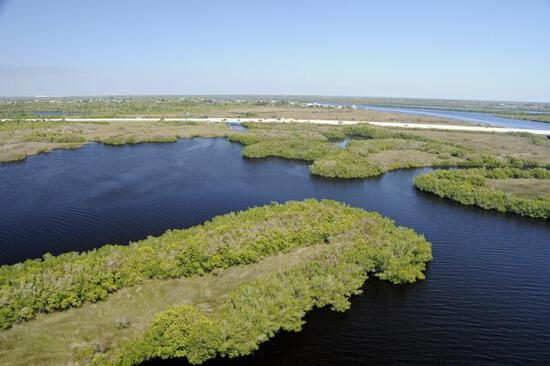 Beautiful lot right on Peace River, in Sunny Florida!