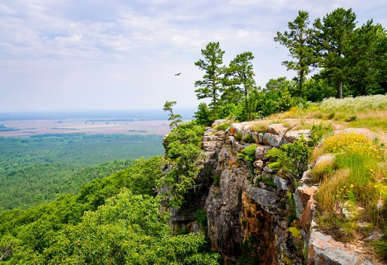 Own a Lot in Sharp County, Arkansas!