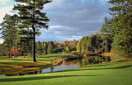 Prime Lot in Garland Woods Golf Resort, Michigan!