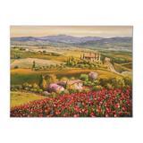 Tuscany Red Poppies by Park, S. Sam