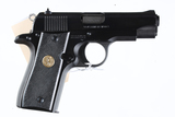 Colt Government Pistol .380 ACP