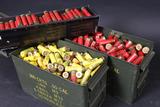 Shotgun ammo reloads (local pickup)