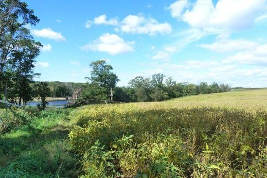 40 Acres of Land for Sale in Palmer Township MN
