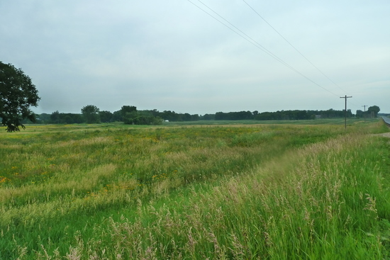44.71 Acres of Hunting Land in Maple Lake