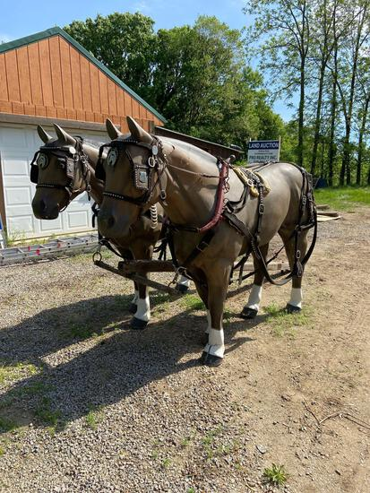 Fiberglass horse pair with harnesses pole and yolk