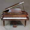 Baby Grand Piano With Bench