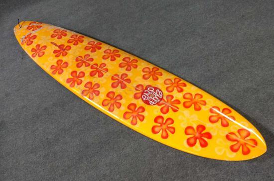 Surf Diva Craig Hollingsworth Surfboard