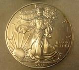 Walking Liberty 1 troy oz silver commemorative coin