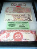 Collection of world currency