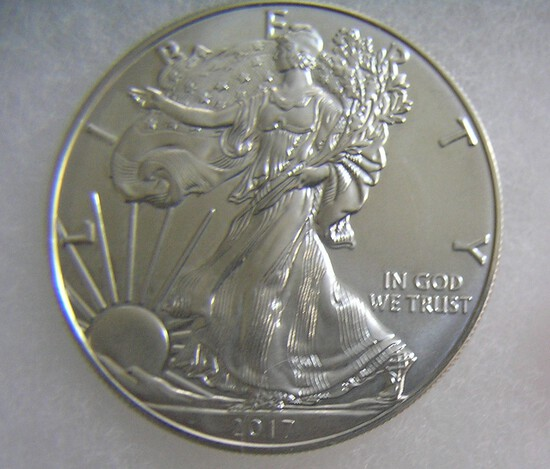 Walking Liberty silver eagle 1 troy oz coin