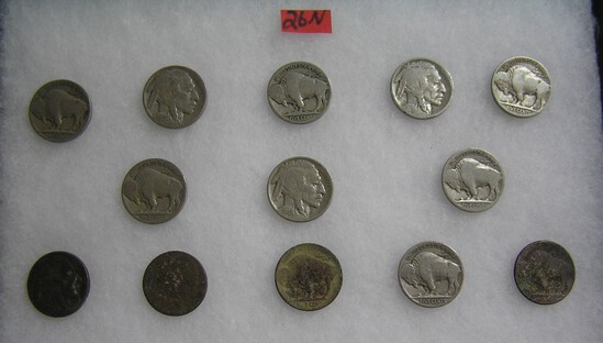 Collection of early Buffalo nickles