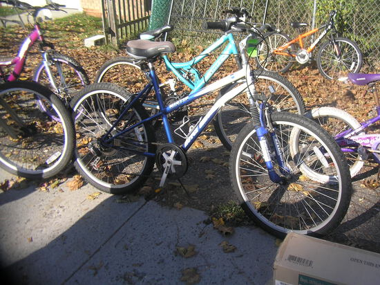 Royce Union mystic mountain bike
