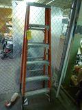 Werner Step Ladder, 6'