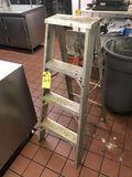Metal Ladder, 4'