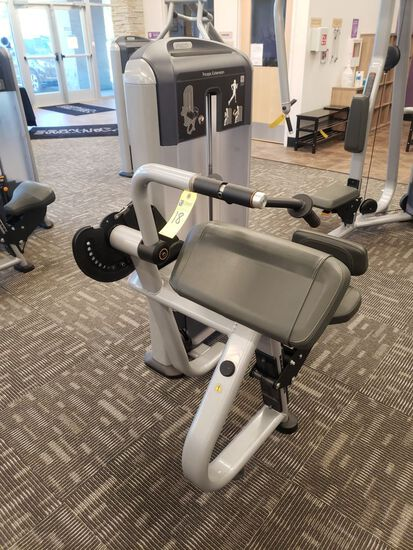 Precor Triceps Extension, Selectorized, m/n Discovery, s/n BA62J24180001