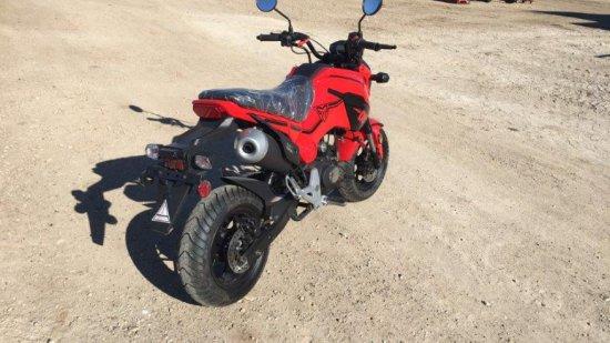 *2017 TAO Hellcat 125cc Motorcycle