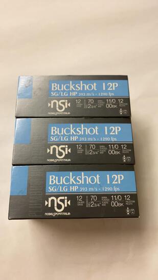 10rds NSI 12ga Buckshot 12P SG/LG HP 00BK