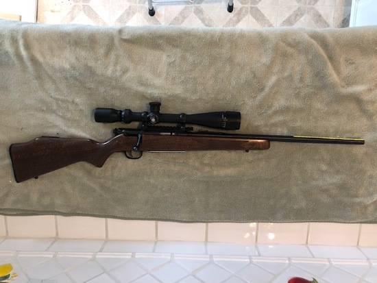 Rifle - Savage Mark II  .22LR