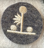 Search Light Administrator's Insignia
