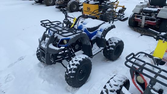 Tao Motor 4 Wheeler