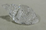 Waterford Crystal Shell Paperweight