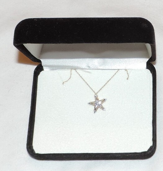 10kt Gold Chain and Starfish Pendant