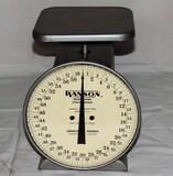 Hanson Model 2060 Kitchen Scales