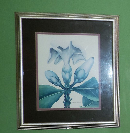 Fagacea Imperialis Flower Print