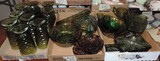 Lot of Green Glass