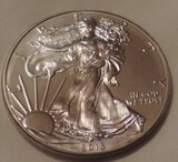 2013 American Eagle