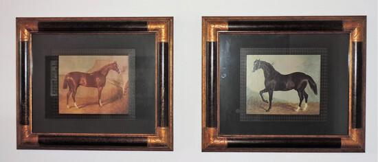 Pair of Horse Prints