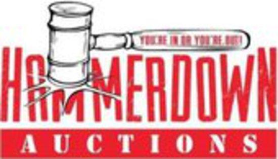 Public Auto Auction Timed Event