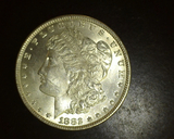 1882  Morgan Dollar HIGH MS