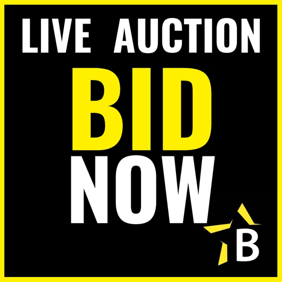Heavy Equipment & Transportation Auction